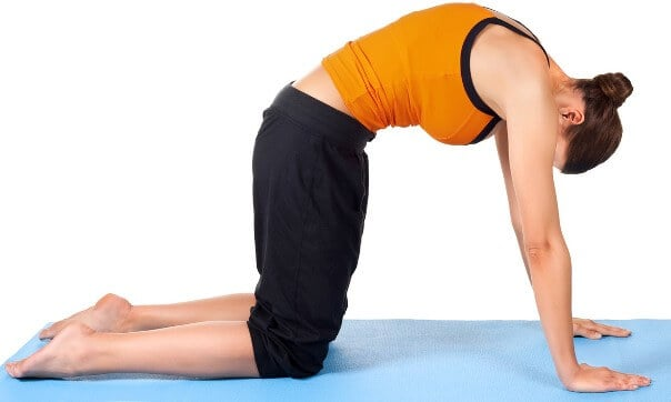 woman-workout-downward-dogs