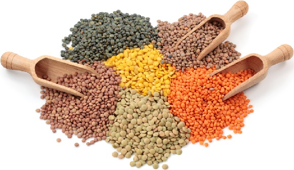 Group of lentils and beans