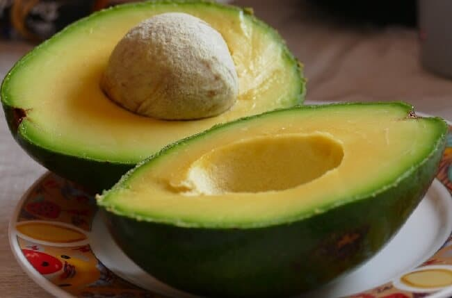 Avocado Fat Sources