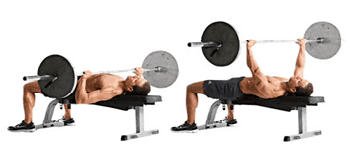 Workout - Barbell Bench Press