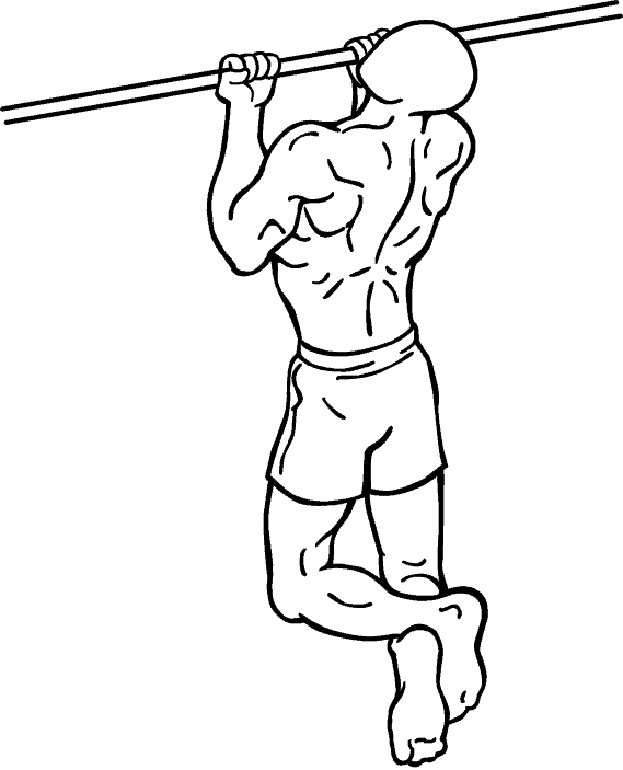 EXERCISE - Close Grip Chin-Up